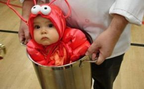 Funny baby picture – lobster in a pot